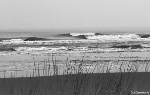 surfcorner245354 copia